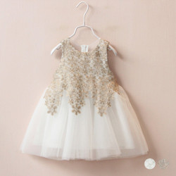 Crochet Lace Mesh Tulle Dress