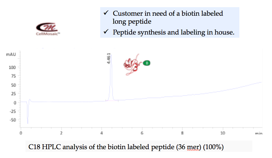 bl001example1-biotinylation.jpg