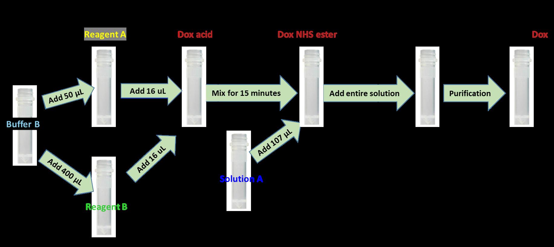cm11406-antibody-dox-scheme.png