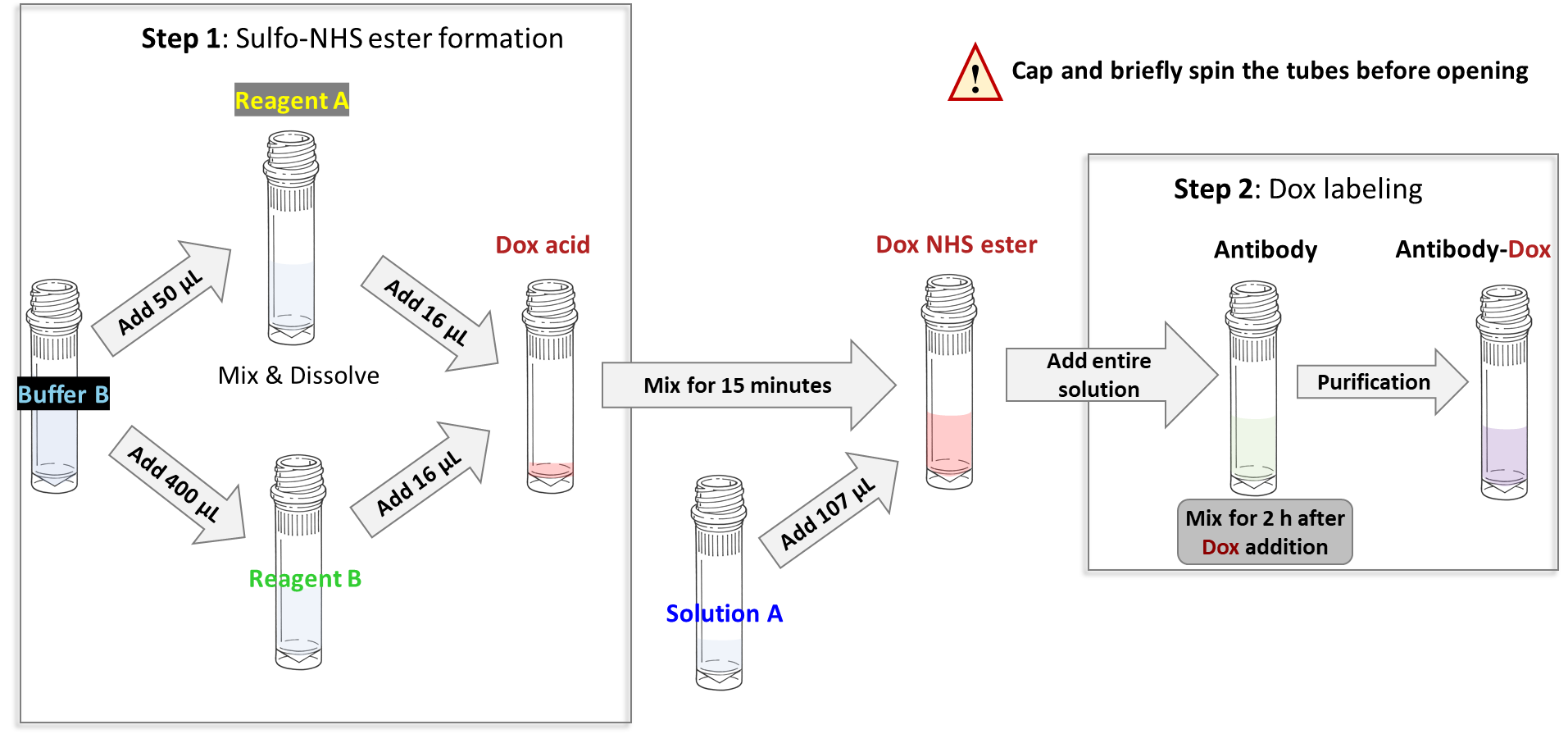 cm11406-antibody-dox-scheme2.png