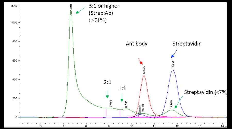 cm52420-streptavidin-antibody-conjugate-hplc-data.png