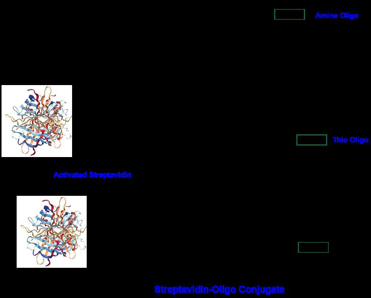 cm52421-scheme-1b.png