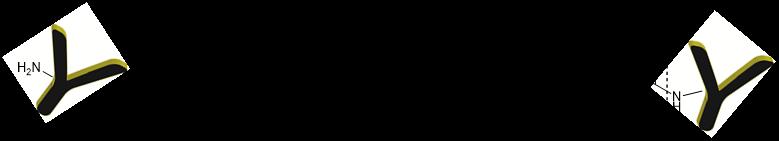 cm86140-biotinylation-chemistry.png
