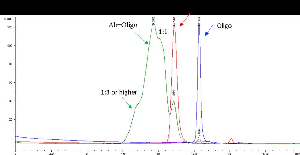 example-antibody-oligo-labeling2.png