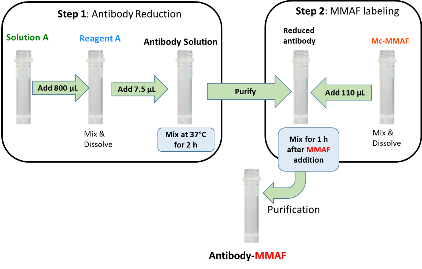protocol-cm11422-antibody-mmaf-labeling.png
