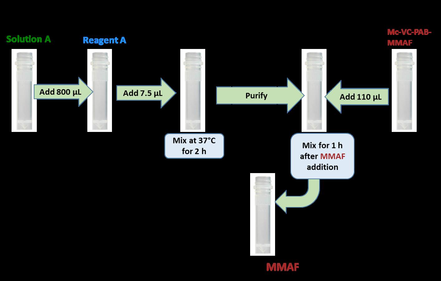 protocol-cm11425-antibody-mmaf.png