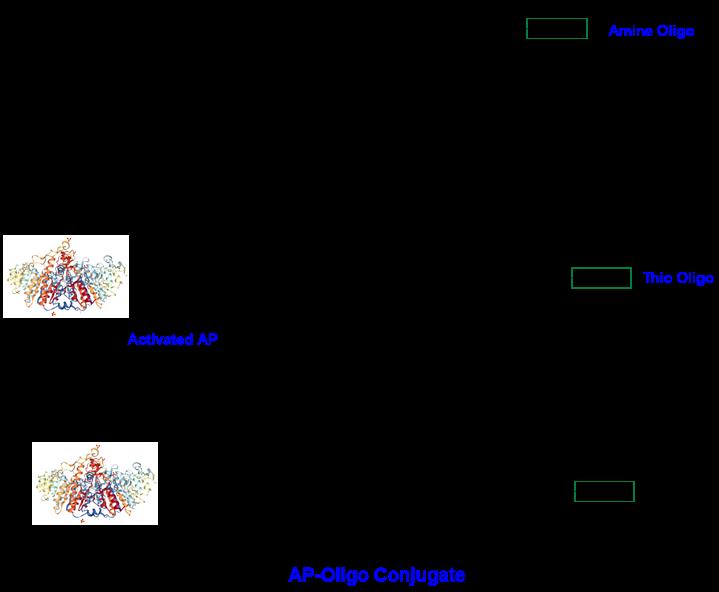 scheme1-cm53403.png