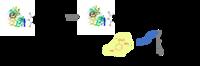Principle of Maleimide Kit CM90002