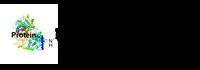 Protein DM1 conjugate CM11414