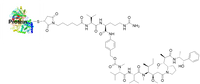 Protein MMAE conjugate CM11413