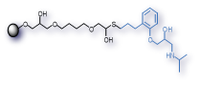 Structure of alprenolol agarose