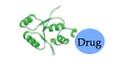 Peptide-Drug Conjugate