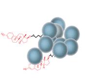 Small molecule amine immobilize onto SepSphere™ agarose beads