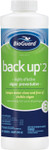 BioGuard Back Up 2 Algaecide 32 oz