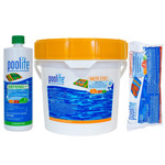 Poolife Kit Brite Stix  Stabilized Chlorine Pak 2