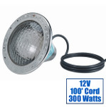 Pentair AmerLite White 300W 12V Pool Light with 100 ft Cord