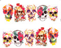 Bright Coloured Floral Skulls for Day of the Dead Nail Art (Water Decals) - Great for Halloween!