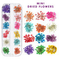 Mini Coloured Dried Flowers Mix for Nail Art - Great for Milk Bath Nails!