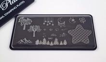 Pamper Plates Professional Nail Stamping Plates - Design #47 (Stars, Moons, Shamrocks, Trees & Mountains)
