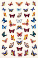Soft Coloured Realistic Butterfly Nail Stickers (Ultra Thin Peel & Stick)