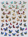 Laser Butterfly Nail Stickers - SET #4