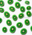 Sliced Kiwi Fruit Clay Fimo Nail Art (30Pcs)