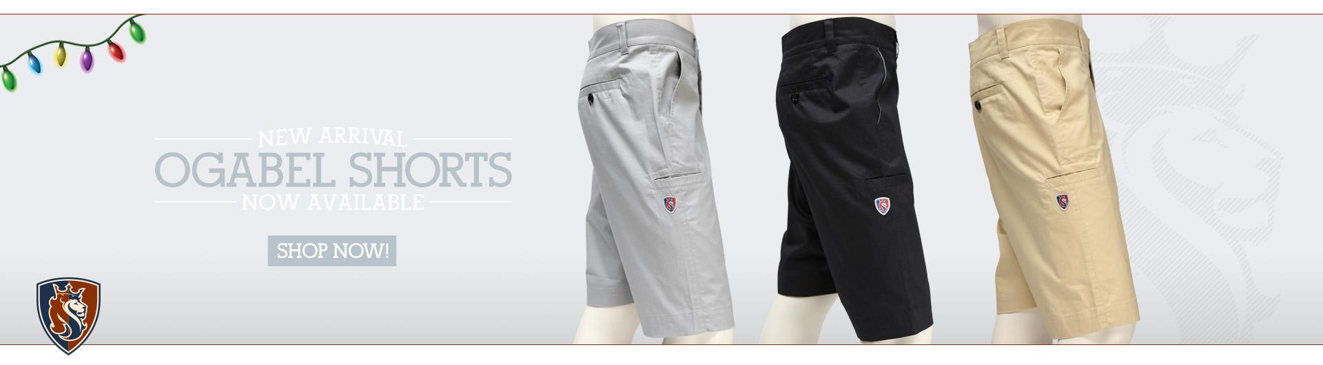 Chino shorts - mens shorts