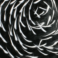 Black/White Two-tone Spike Faux Fur