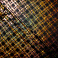 Holographic Gold on Black Diagonal Plaid