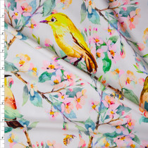Watercolor Finches and Cherry Branches on White Nylon/Spandex Print Fabric By The Yard