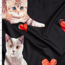 Kitten Photo Cutouts and Hearts on Black Brushed Poly Spandex Fabric By The Yard