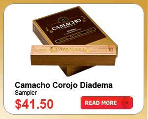 Camocho Corojo Diadema