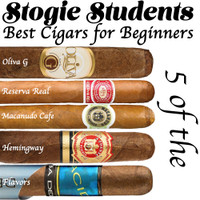 Stogie Students: 5 of the Best Cigars for Beginners