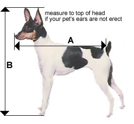 measuring for a dog airline carrier