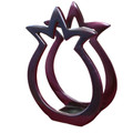 Aluminum Napkin Holder Pomegranate Shape Red (EM-NHMC-1A)