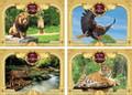 3D Poster Set-- Animals (P3D40-SET)