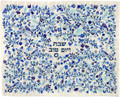 Emanuel Full Embroidered Challah Cover Birds- Blue (EM-CMC8)