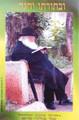 "Laminated Poster 10"" x 16""-- R' Chaim Kanievsky (P563)"