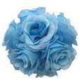 "6"" Rose Ball, Multiple Colors - Pack of 12 (CLA-20160217)"