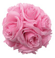 "4"" Rose Ball, Multiple Colors - Pack of 12 (CLA-20160218)"
