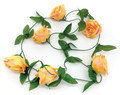 6' Rose Garland, Orange - Pack of 12 (CLA-20160219O)