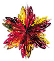 "6 Section Star Burst - Pack of 12 - 16"" (71191)"