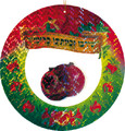 Metallic Hanging Pomegranate Decoration - 12 Packs of 2 (PL-203)