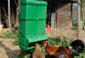The Wise Mountable Feeder 10kg