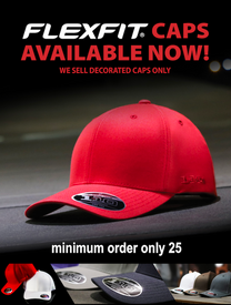Flexfit Embroidered Cap 110C