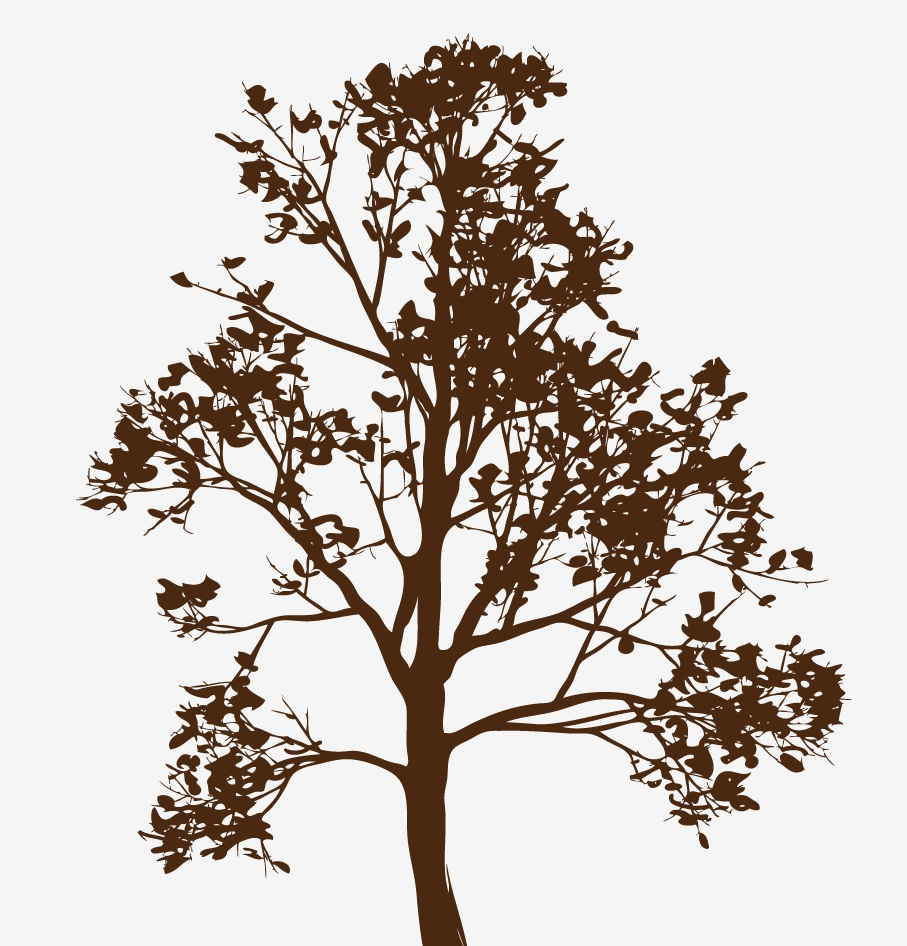 wall-tree-decal-with-leaves-and-branches-closeup.jpg