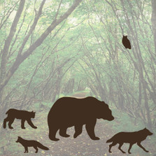 Forest Predator Woods Animal Wall Decal Set Bear Fox Wolf Bobcat #1252