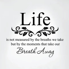 Life Is Not Measured By the Breaths We Take Vinyl Wall Decal Art #1302
