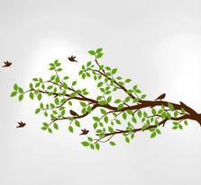 Tree Branches Wall Decal Birds Vinyl Sticker Nursery Leaves #1296