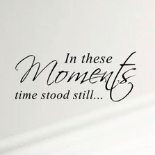 In These Moments Time Stood Still Home Wall Decal Sticker Family Quote Art #1292